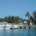 Bimini boats docked