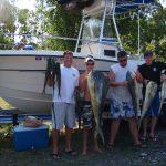 Boathouse Dolphin Team