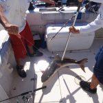 boathouse Fishing team 2